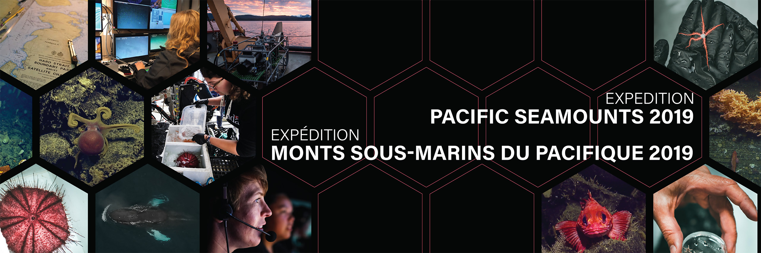 Pacific Seamounts Expedition 2019