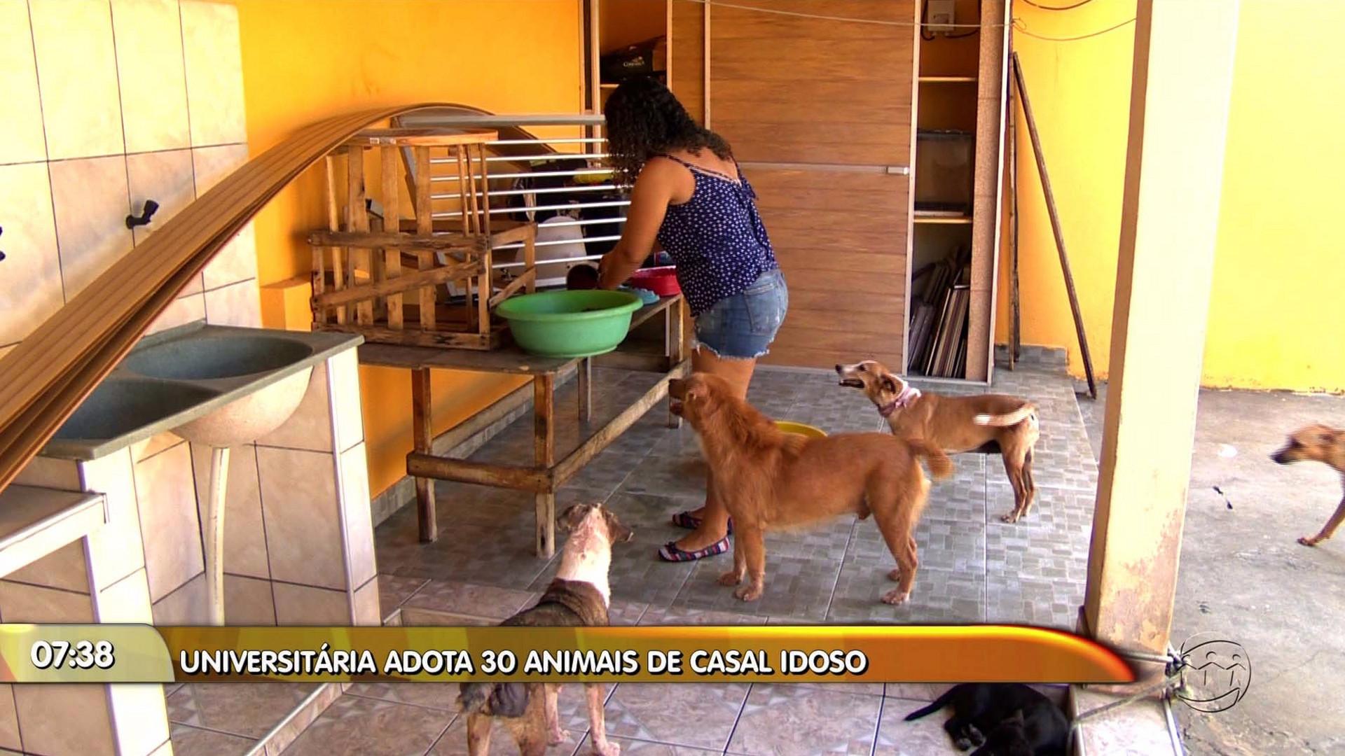 UNIVERSITÁRIA ADOTA 30 ANIMAIS DE CASAL DE IDOSOS - Manhã no Ar 17/11/17