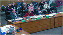 Extraordinary Council Meeting - Hearing of Submissions -  Representation Review for Local Elections