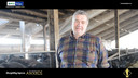 Storytelling Imprese Bcc Treviglio | Società Agricola Vitali