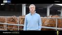 Storytelling Imprese Bcc Treviglio | Fattoria di Alfredo Parmeggiano
