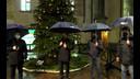 Accensione dell'Albero di Natale targato Bcc Treviglio