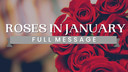 Roses in January | Full Message